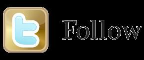 Twitter - Follow button